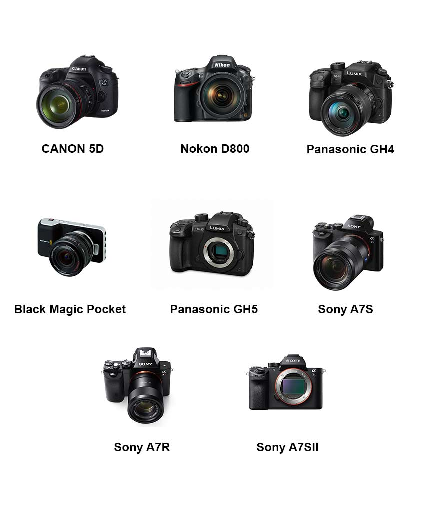 Canon 5D, Nikon D800, Black Magic Pocket, Panasonic GH4, Panasonic GH5, Sony A7S, Sony A7R, Sony A7SII